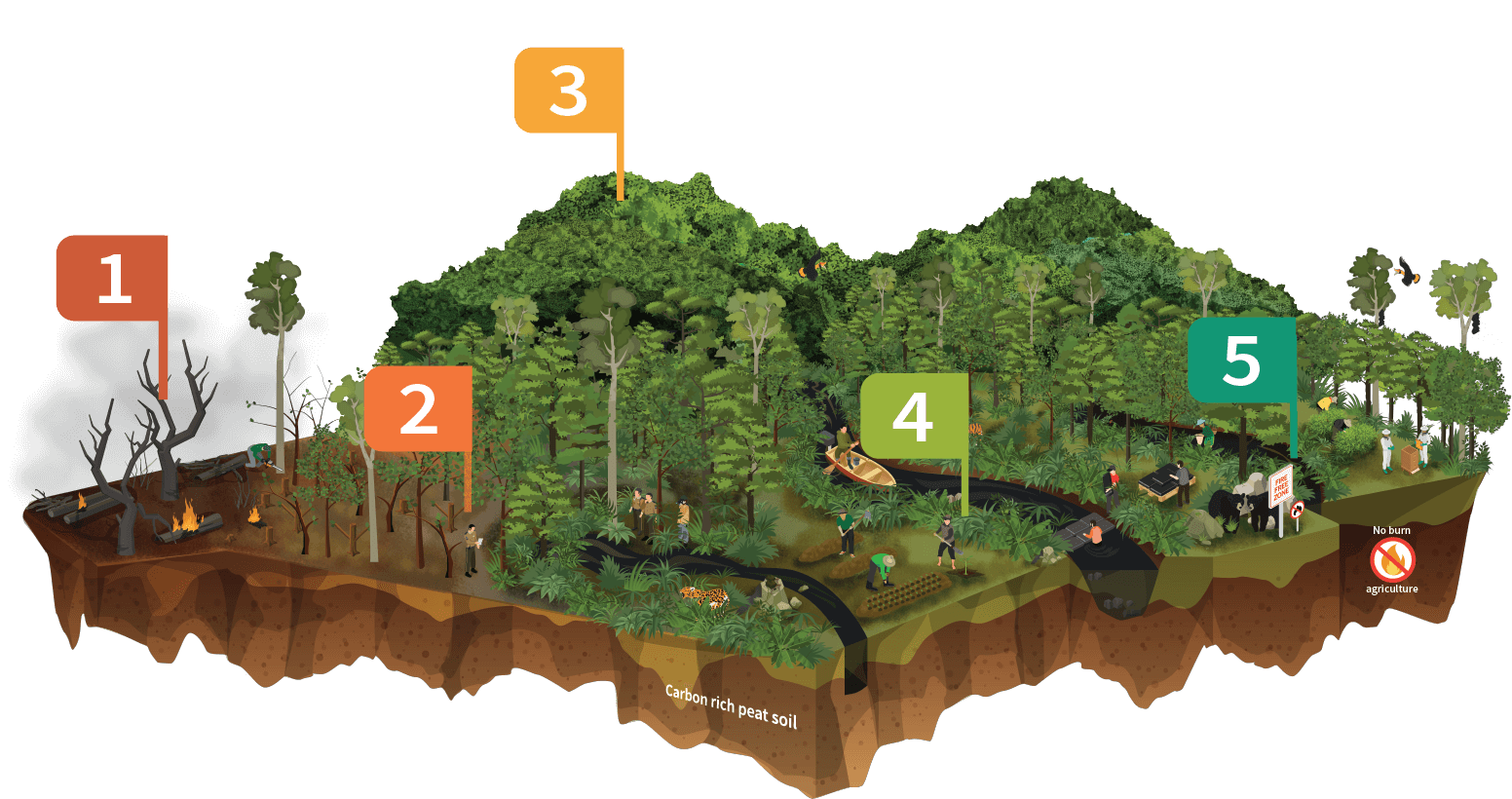 Ecosystem Map - Restoring Forest Ecosystems