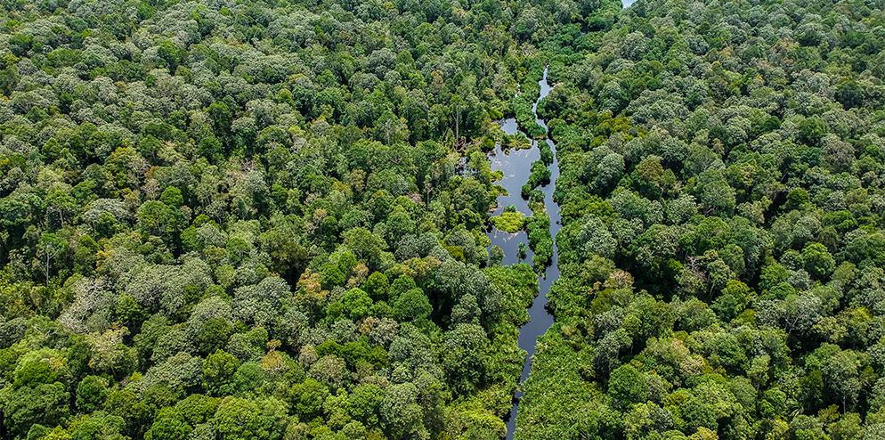 Landscape Level Conservation