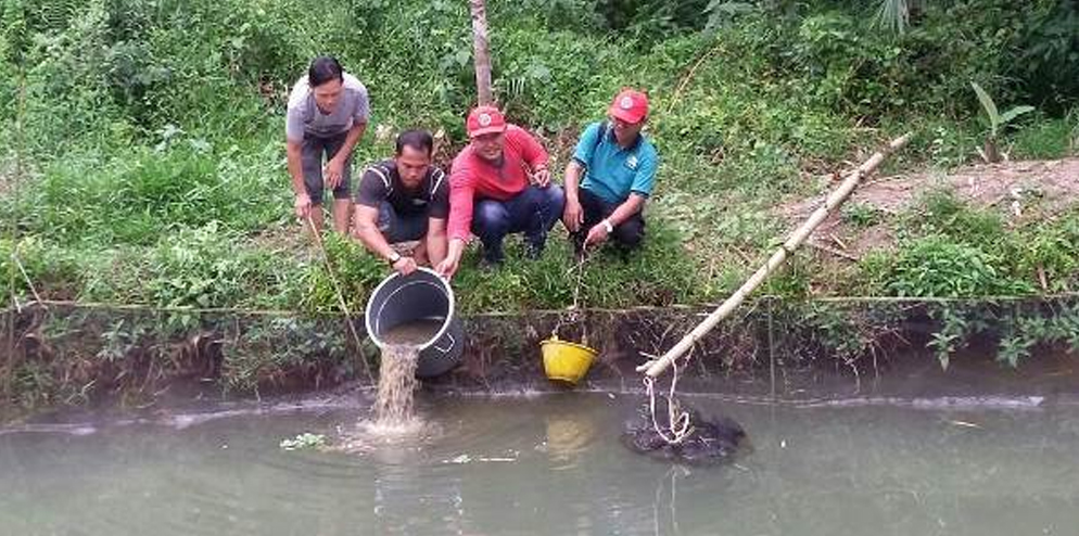 Spreading catfish seeds by Head of Dusun 1, Selat Akar Village (3th from right ) with RER team of Pulau Padang.