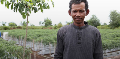 Helping the Community through Sustainable Farming