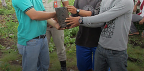 Planting for the Future: Employee Volunteering by RER with Community of Sangar, Pulau Muda Village