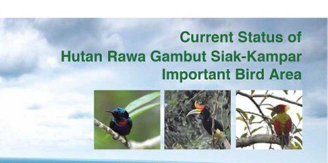 IBA Report - Restorasi Ekosistem Riau