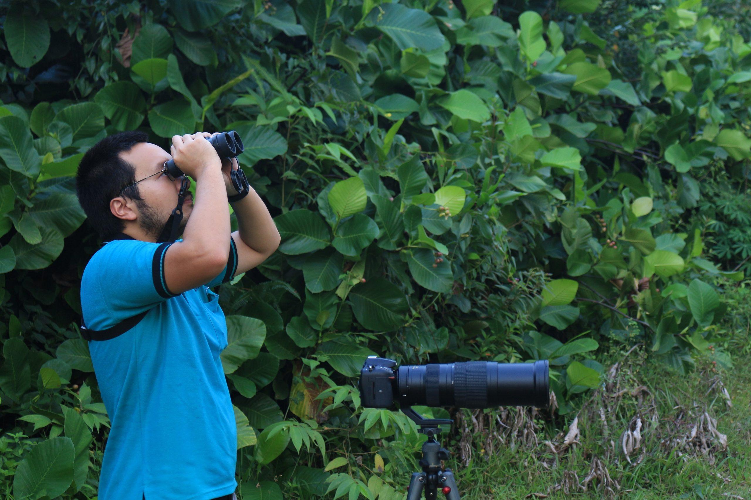 Pengamatan burung menggunakan teropong (binocular)