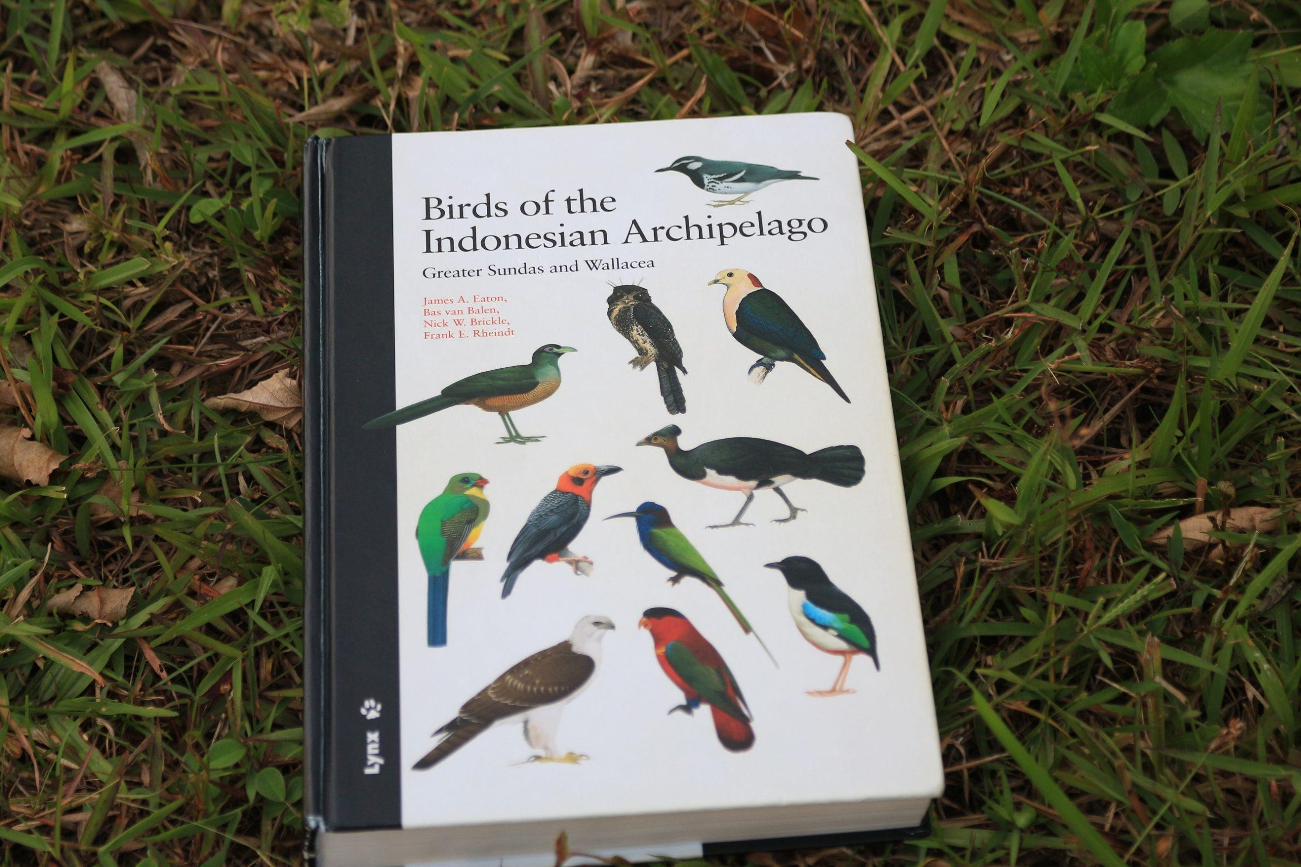 Buku panduan dalam mengidentifikasi burung