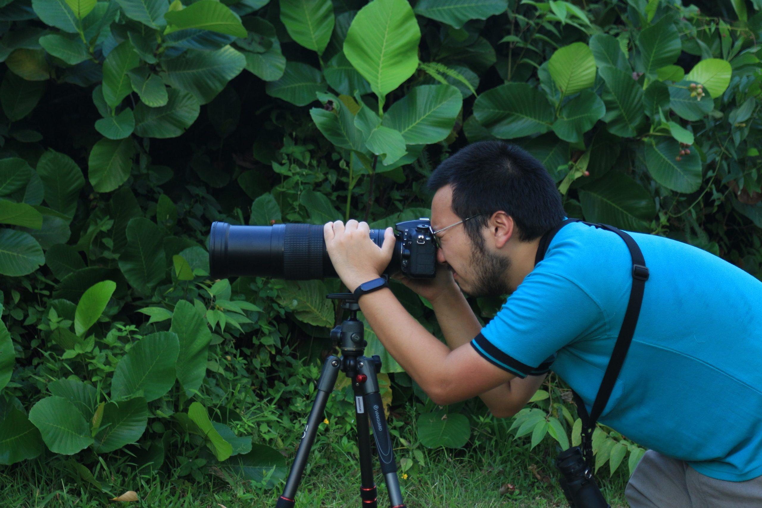 Fotografi berkaitan erat dengan pengamatan burung