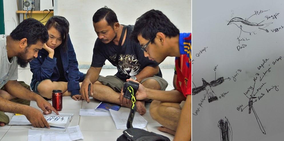Diskusi tentang identitas spesies burung tertentu dan sketsa lapangan beberapa spesies burung yang dijumpai pada hari tersebut