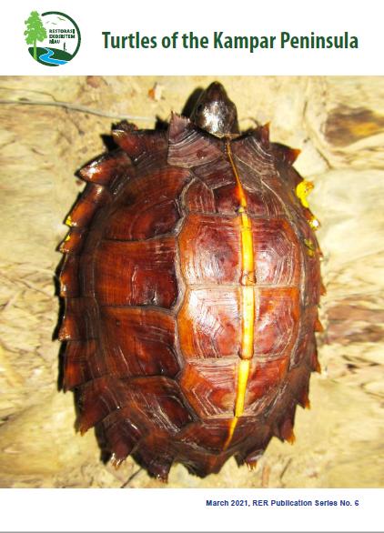 Turtles of the Kampar Peninsula