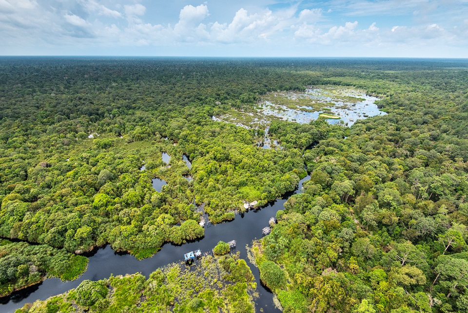 Restorasi Ekosistem Riau (RER), as program supported by APRIL Group which strategically located in the tropical areas of Sumatra, Indonesia, aims to restore and conserve ecologically important peat swamp forest the size of Greater London.