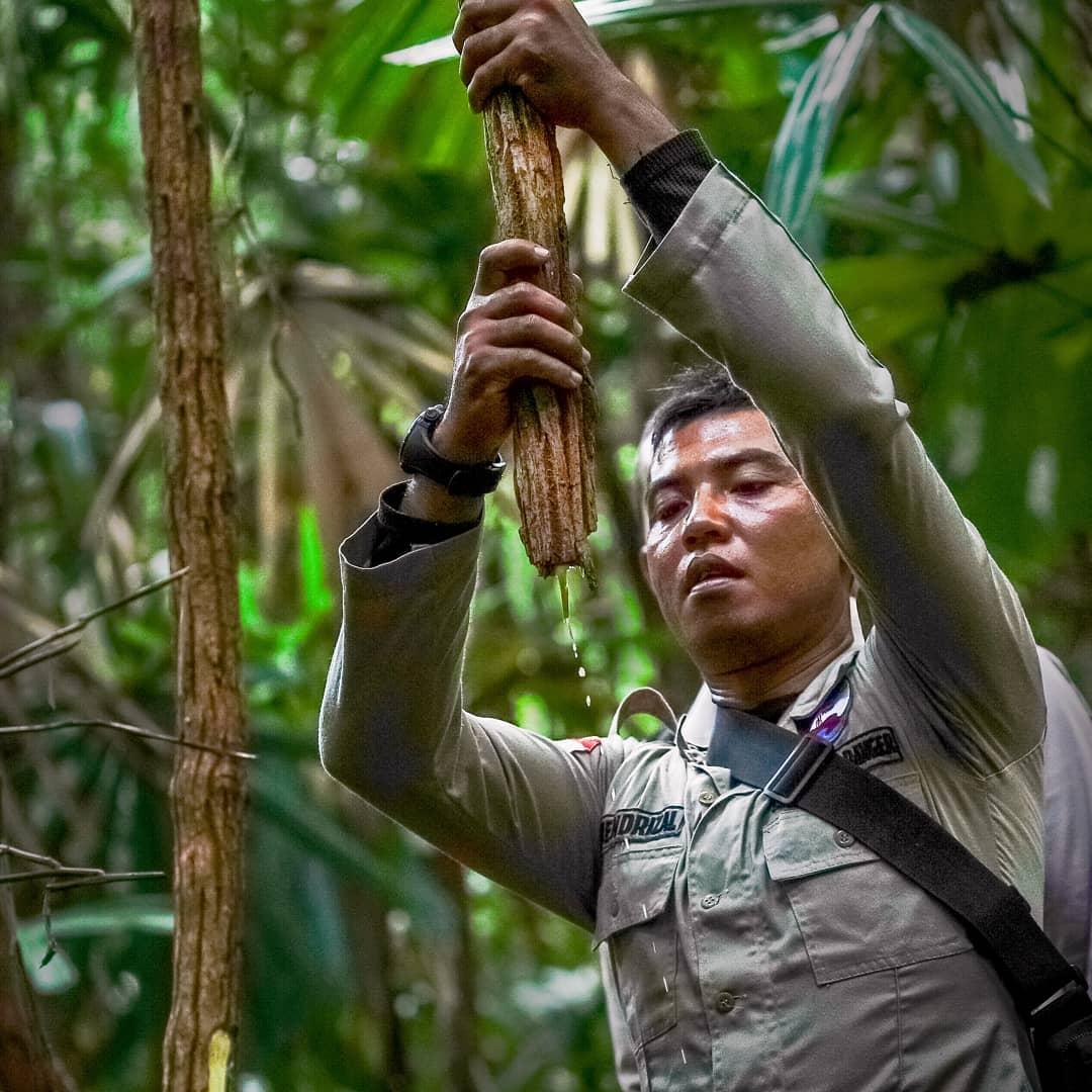 Hari Jagawana Sedunia diperingati setiap tanggal 31 Juli sebagai momen kita untuk merefleksikan keberanian dan pengorbanan para jagawana yang telah melindungi hutan.
